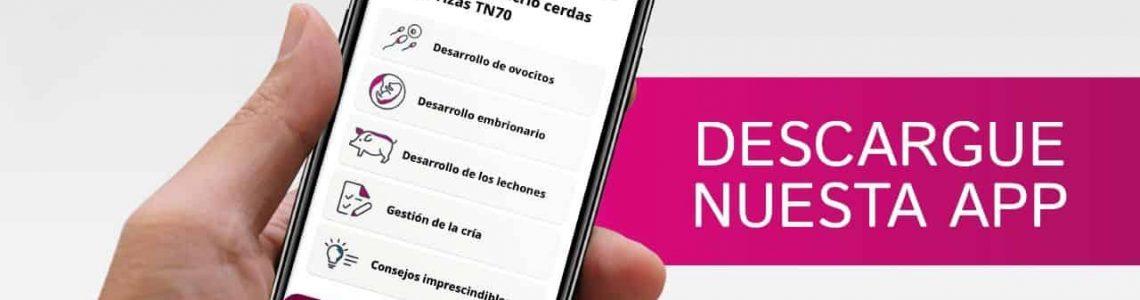 App TN70